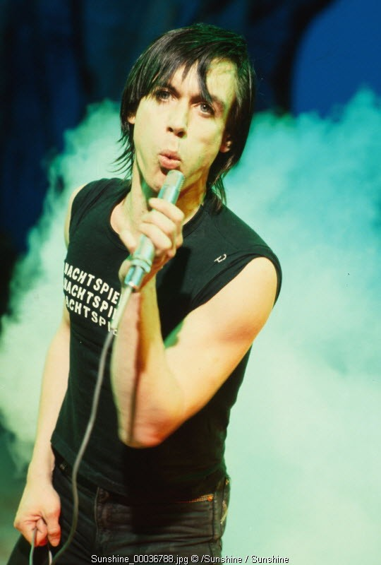 iggy pop, barry schultz, stooges, holland, amsterdam, netherlands, punk, scar, skin